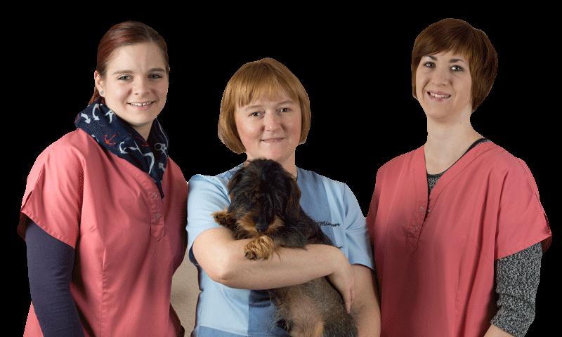 Team Kleintierpraxis Wiebke Miesner