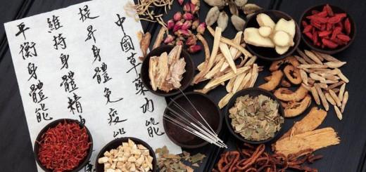 Chinesische Heilpilze
